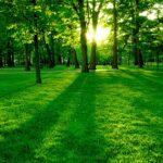 7 Tácticas Para Recuperarse De Una Mala Ruptura