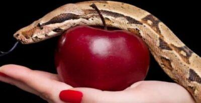 Evita Cometer Estos 7 Pecados Mortales Si Quieres Recuperar a Tu Ex